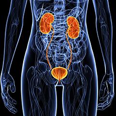 sangue nelle urine 3 mesi dopo lintervento chirurgico alla prostata